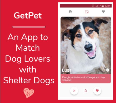 Shelter-Dog-App-GetPet