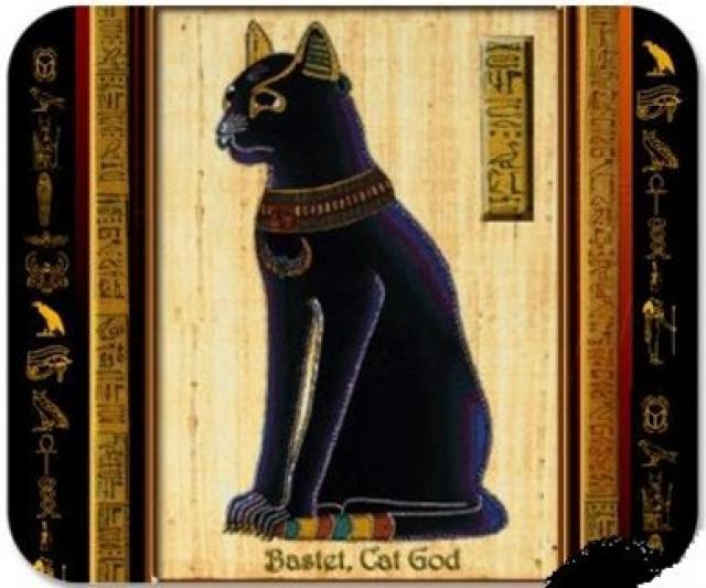 gatos egipto ant