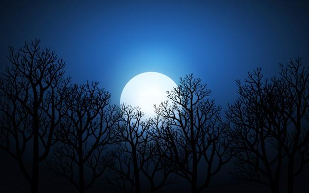 Luna en la noche
